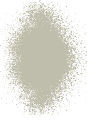 Bild von rever Farbe 10FR grau 400ml Spraydose Spray für